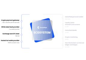 CoinsPaid verbindet Unternehmen mit DeFi